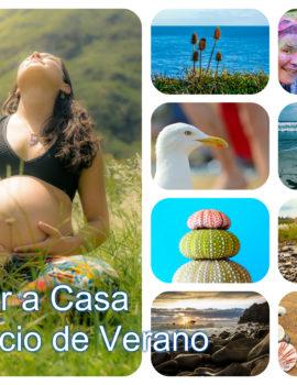 Taller Online Volver a Casa en el Solsticio de Verano Gabriella Robles